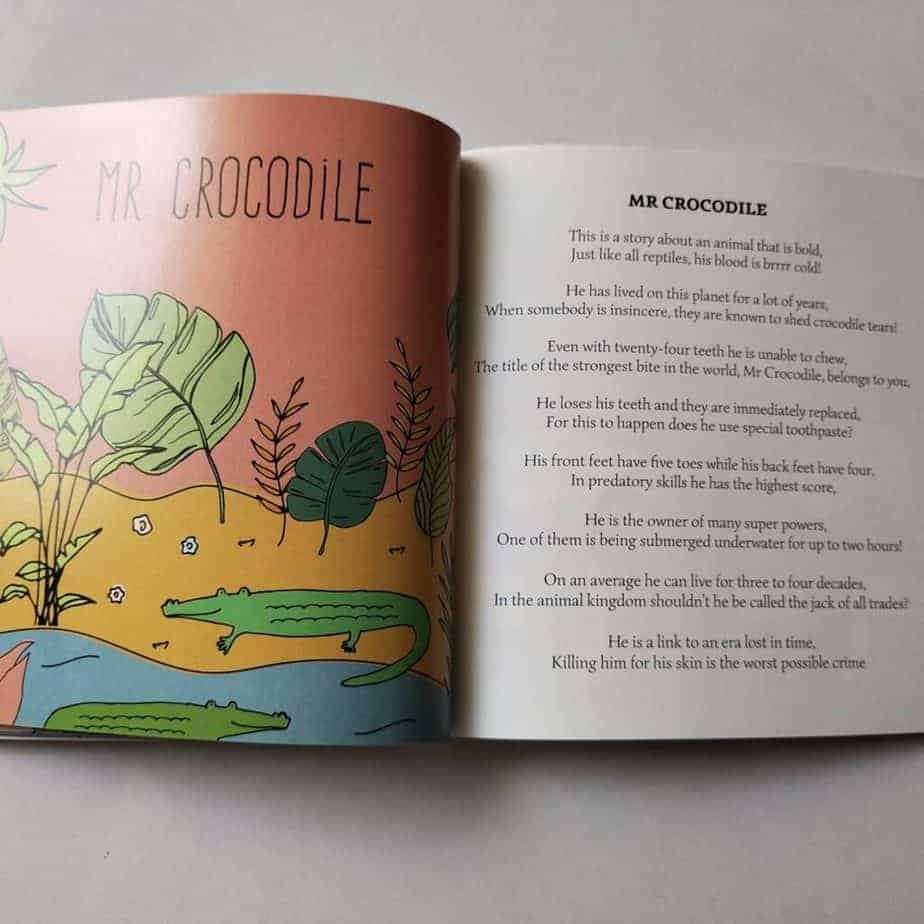 A short description of Crocodile