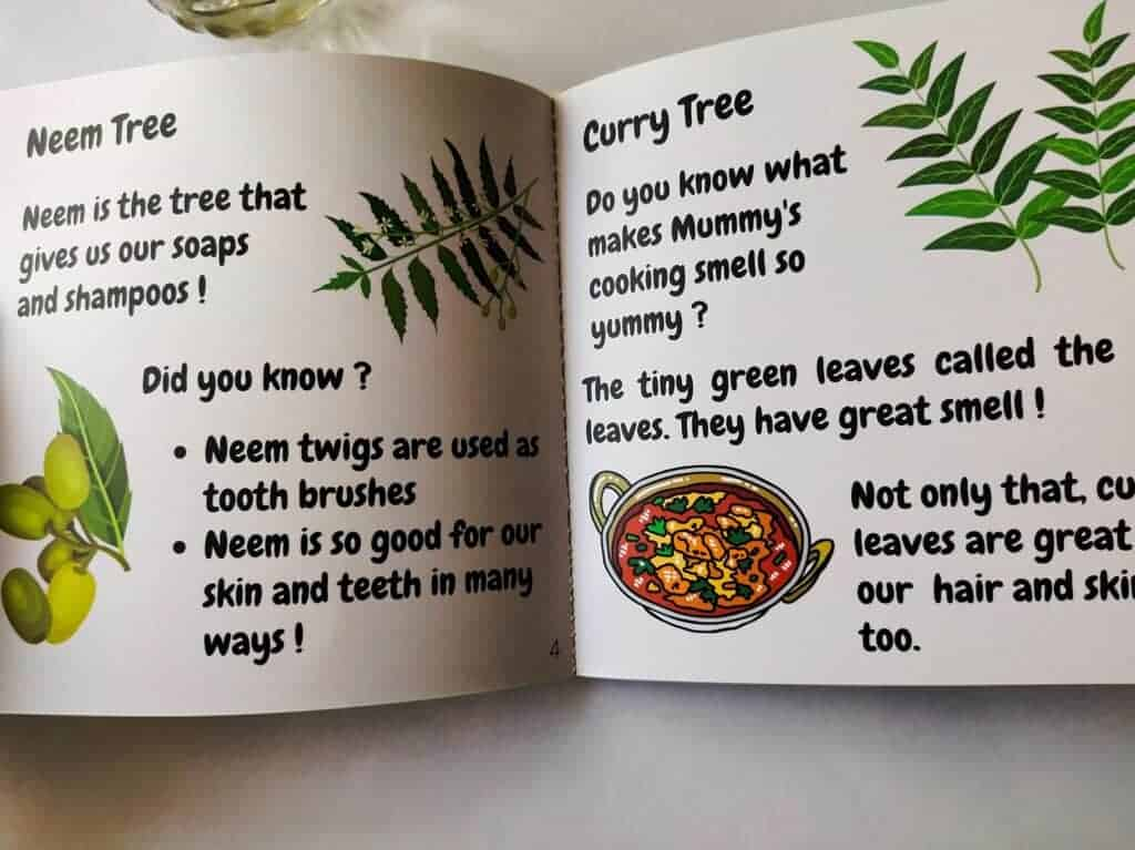 Facts about Neem tree and curry tree
