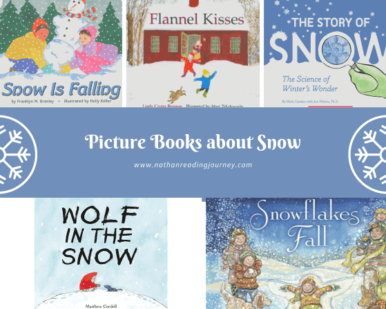 picture book about snow