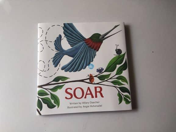 Review: SOAR By Hillary Daecher