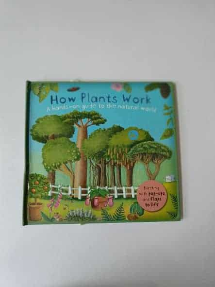 REVIEW: How Plants work: A hands-on guide to the nature world by Christiane Dorion